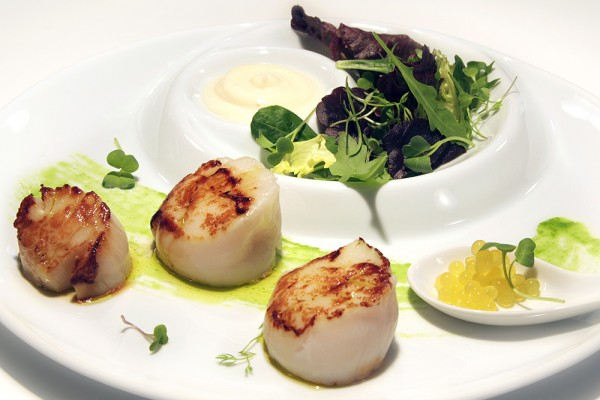 Grilled scallops with iberiam oil and cauliflower cream